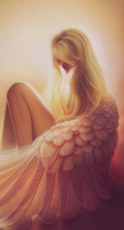 Photo des Anges Gardiens